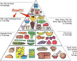 weightloss group weight loss now on a plate no longer a food pyramid