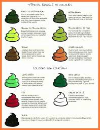79 Abiding Poop Chart What Does It Mean
