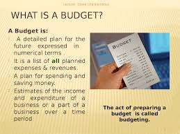 What Is A Budget Self Imposed Budget Powerpoint Slides