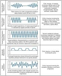 Abnormal Breathing Patterns Unique Vital Signs Measurement Anesthesia Key