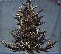 rustic antler chandeliers