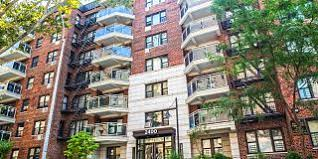 110 1 Bedroom Apartments For Rent In Bronx, NY