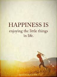 Happiness Quotes Happiness Is Enjoying The Little Things In Life Best Happiness Quote