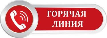 В Тверской области общественная палата открыла «горячую линию» по вопросам питания школьников - Лента новостей Твери