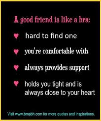Short Funny Friendship Quotes Magnificent Short Funny Friendship Quotes Sayings Only For Best Friends