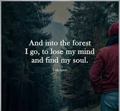 40 Forest Quotes 40 QuotePrism Magnificent Forest Quotes