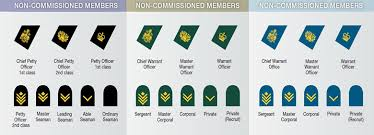 Army Nco Ranks Chart Canadian Military Rank Structure For The Air Force Navy And