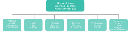 Worldcare Wellness Center Will Feature Org Chart Graphic