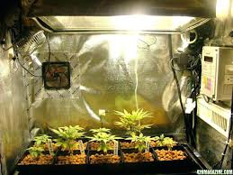 diy grow room closet grow room ideas medium size of closet grow setup new grow room diy grow room hydroponic grow closet