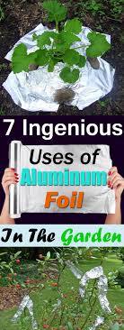 Uses Of Kitchen Garden 7 Ingenious Aluminum Foil Uses In The Garden Balcony Garden Web