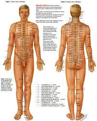 30 You Will Love Acupressure Body Chart
