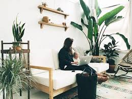The 5 best design ideas for decorating your house with plants