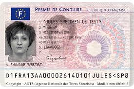 Conduire Permis Licence De Obtaining Driving A French