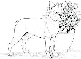 Dog Coloring Pages To Print Top 25 Free Printable Dog Coloring Pages