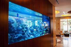 Decorations:Minimalist Home Aquarium With Brown Storage Design Ideas Luxury  Home Aquarium Design With Wood