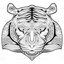 Illustration Dessin La Main T Te De Tigre Coloriage Page