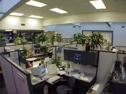 Office cubicle plants Grow Creative Juice Creative Juice