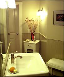 basement bathroom remodel ideas. small basement bathroom designs pics on best home decor inspiration about lovely remodel ideas d