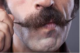 Image result for movember