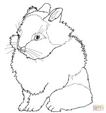 Small Picture Lionhead Rabbit coloring page Free Printable Coloring Pages