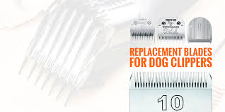 Andis Poodle Chart Buying Dog Clipper Blades All The Different Blades For Dog
