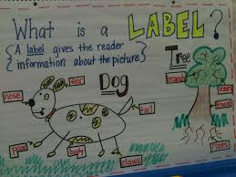 Writing Workshop Kindergarten Anchor Charts Kreative In