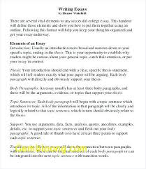 College Essay Examples Gorgeous Good College Essays Best Of Format For A College Essay College Level