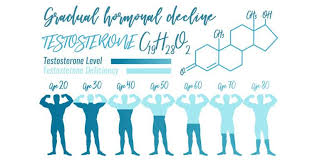 Testosterone Level Chart By Age Testosterone Levels Made Simple Guide To Gains