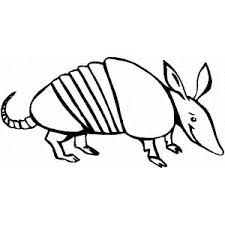 Small Picture Armadillo coloring page Armadillo free printable coloring pages