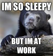 Bear Im - Work So At But Sleepy Confession Quickmeme