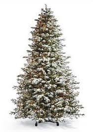 Amazoncom Best Choice Products 75u0027 Ft Prelit Premium Spruce Blue Spruce Pre Lit Christmas Tree