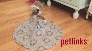 Petlinks Mystery Motion from Worldwise - YouTube