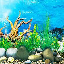 Monland Aquarium background paper HD ...