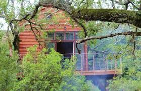 Best Treehouse Hotels In The World Top 10Treehouse Accommodation