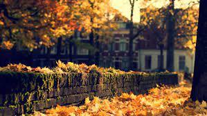 Autumn Wallpaper Hd - New Wallpapers