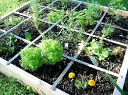 gardening catalogues large size of organic mail order catalogs free