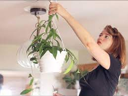 how to hang plant from ceiling