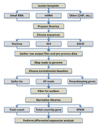 Illumina Sequencing Flow Chart Experimental Design Preprocessing Normalization And