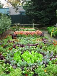 Small Picture 30 best Potager images on Pinterest Potager garden Vegetable