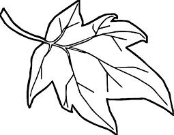 maple leaf coloring page 4 leaf clover color page children coloring coloring page of a leaf