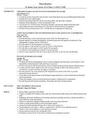 Finance Business Manager Resume Sample Objective Development Summary
