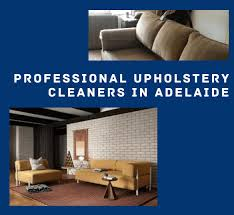 upholstery cleaning adelaide leather