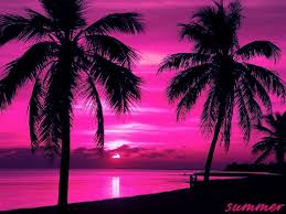 Pink And Black Wallpaper 17