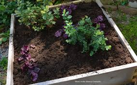 blueberry soil mix. Interesting Mix Top Dressing Blueberries And Acid Loving Plants And Blueberry Soil Mix