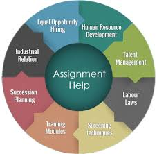 hr assignment help hrm assignment writing service assignment box hr assignment help