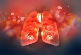 Copd Vs Emphysema Lung Condition Differences