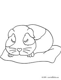 Small Picture Sleeping guinea pig coloring pages Hellokidscom