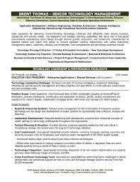 Professional Resume Template Word 2013 Resume Templates Word 24 Open Office Template Download Word 24 16
