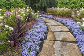 landscaping on a budget 5 easy money