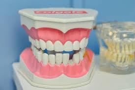 Resultado de imagen para orthodontist